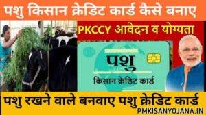 Pashu Kisan Credit Card Scheme 2020