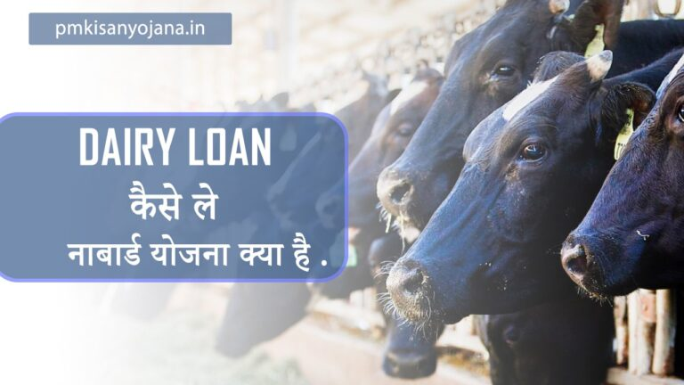 Dairy Loan कैसे ले . नाबार्ड योजना क्या हैं